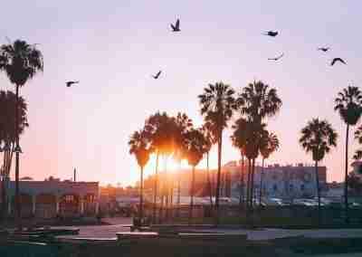 Qué hacer en Los Ángeles